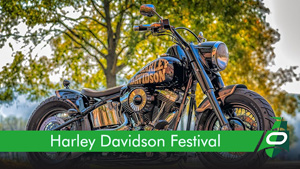 Learn about the Harley Davidson Festival